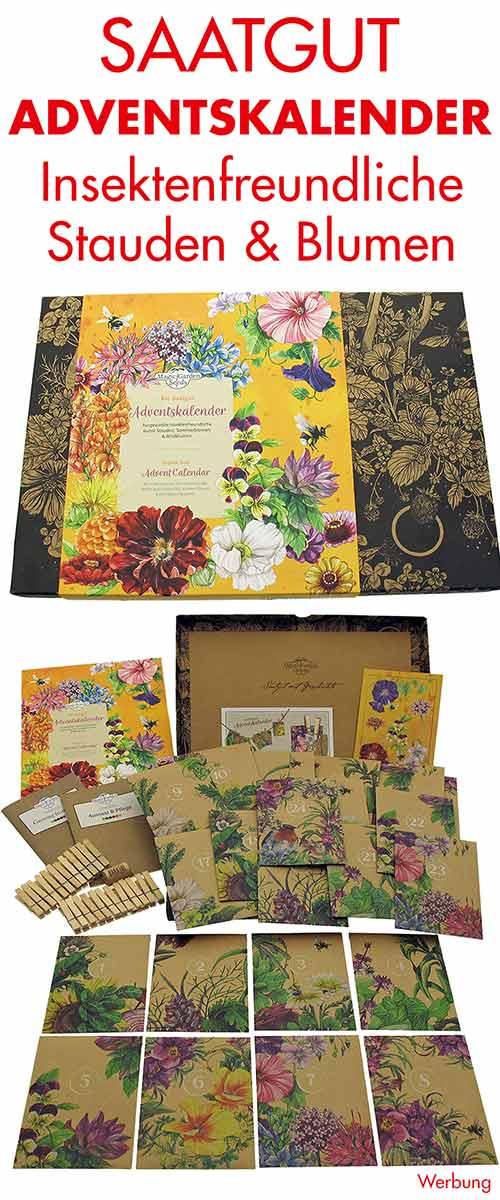 Saatgut Adventskalender mit Samen für insektenfreundliche Stauden, Sommerblumen und Wildblumen