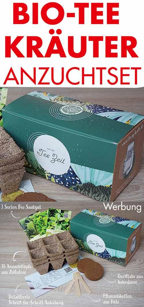 Geschenkset Bio Tee Kräuter Anzuchtset