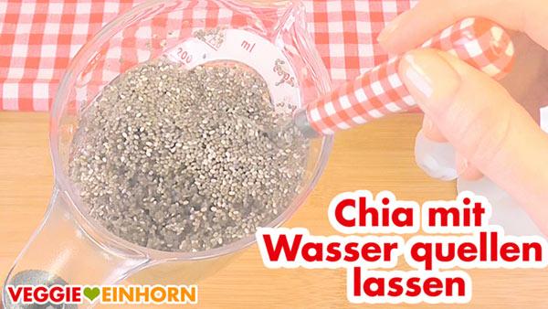 Chia Samen mit Wasser quellen lassen