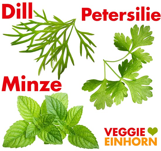 Dill, Petersilie und Minze