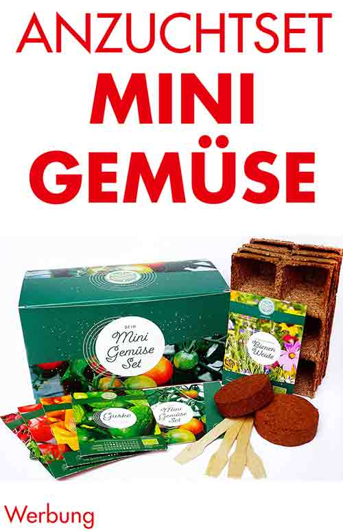 Geschenkbox mit Gemüse Anzuchtset