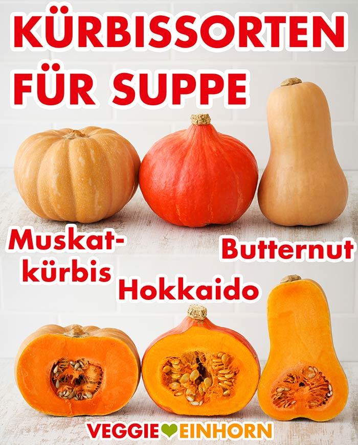 Kürbissorten für Suppe (Muskatkürbis, Hokkaido, Butternut)