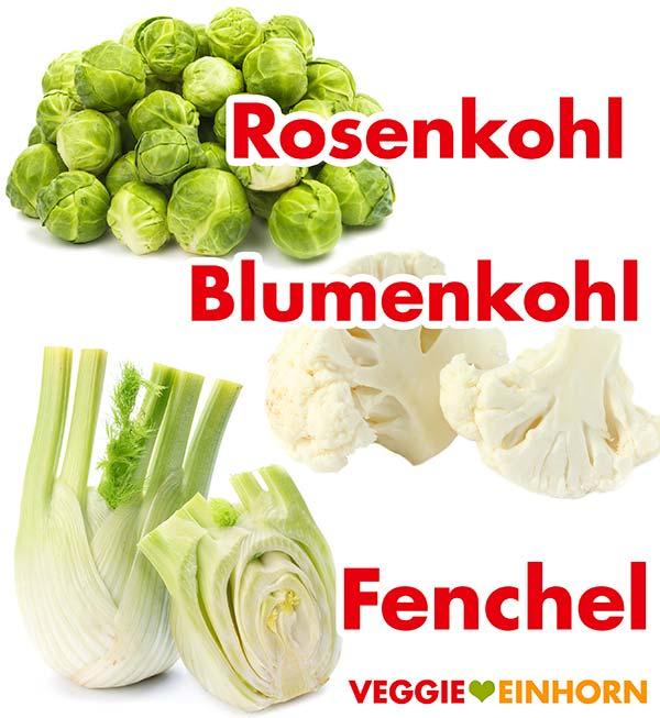 Rosenkohl, Blumenkohl und Fenchel