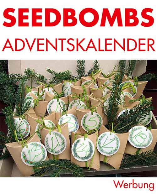 Samenbomben Adventskalender