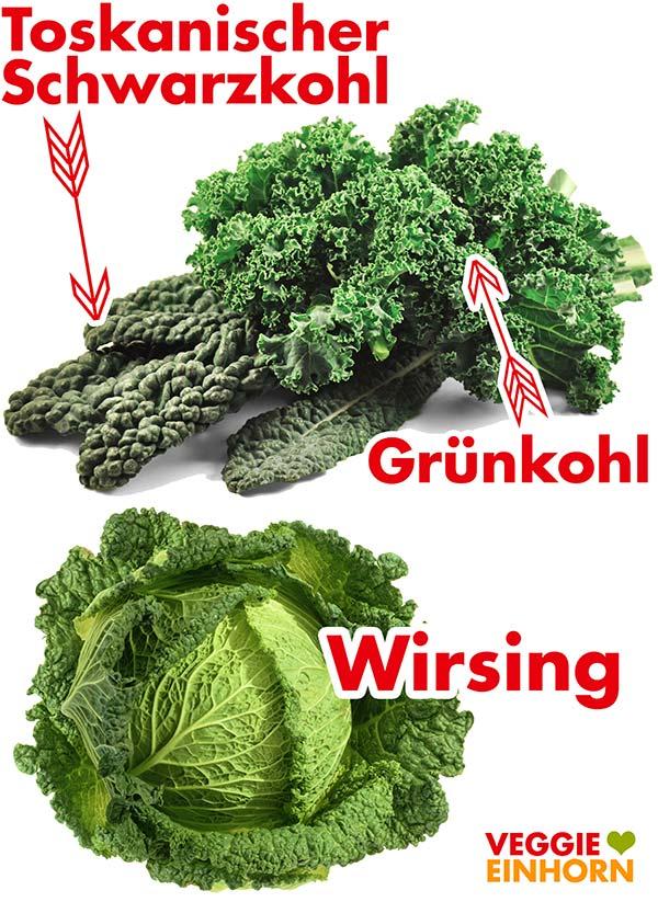 Toskanischer Schwarzkohl, Grünkohl und Wirsing