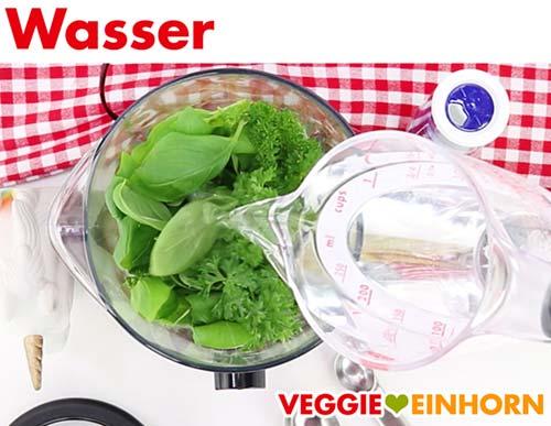 Wasser in Standmixer geben für veganen Cashewdip