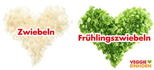 Zwiebelwürfel und Frühlingszwiebelringe