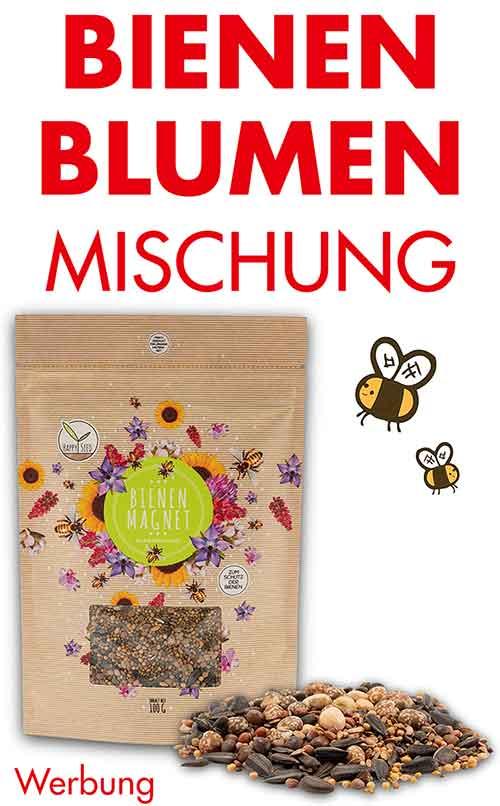 Bienen Blumen Samenmischung