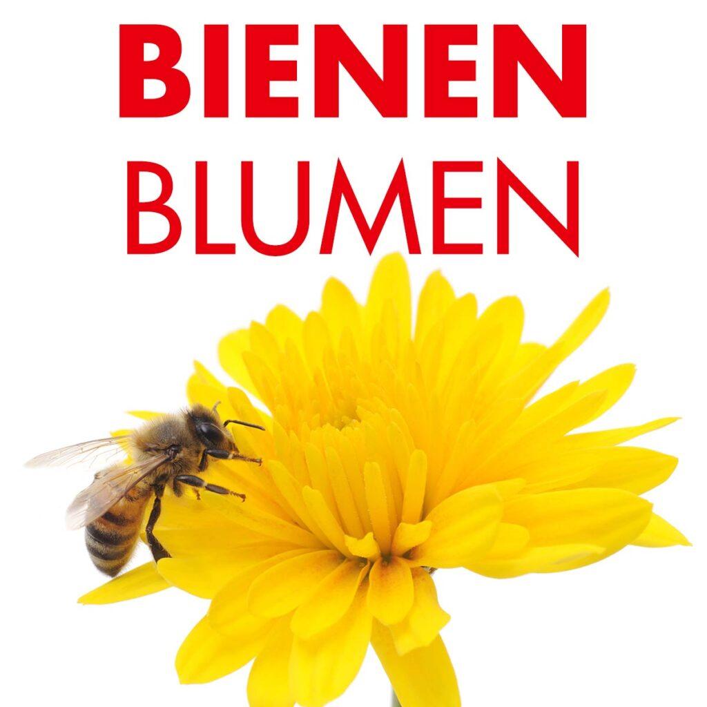 Blumensamen für Bienen