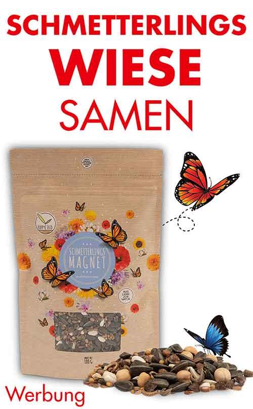 Schmetterlingswiese Samen